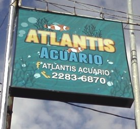 Atlantis Acuarion in Guadalupe, Costa Rica